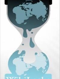 Les révélations de WikiLeaks n'apportent rien et ne changent rien ?