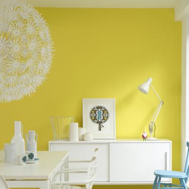 Couleur peinture quelles sont les couleurs phares en 2012 alg rie360 - Quelles sont les couleurs ...