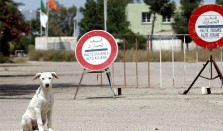 Barrage électrifié à la frontière Algéro-Tunisienne,Les maquisards face à la théorie du «champ clos»