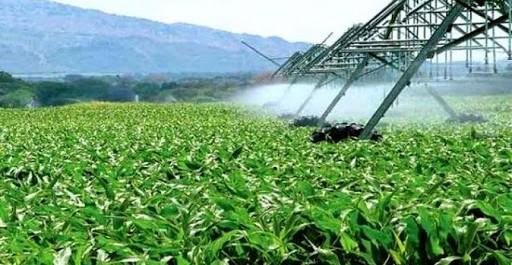 Algérie-UE: 20 millions d'euros pour financer le programme d'action du développement rural et agricole