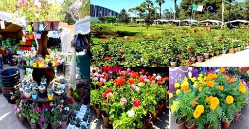 Les 10èmes floralies d'Oran du 10 au 20 mai