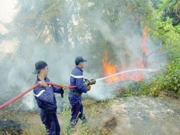 RELIZANE De nouvelles pistes pour lutter contre les feux de forêt