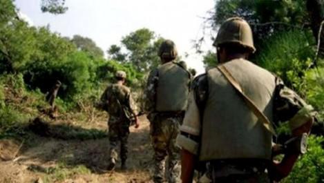 Deux fusils de chasse saisis à Batna (MDN)