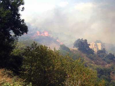 Plusieurs incendies ravagent les forêts de Tlemcen
