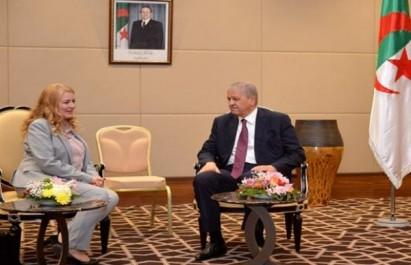 Sellal reçoit la ministre tunisienne de l'Energie, des Mines et Energies renouvelables
