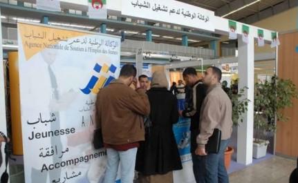 Alger: Plus de 24 000 placements réalisés par l'Anem en 2016.