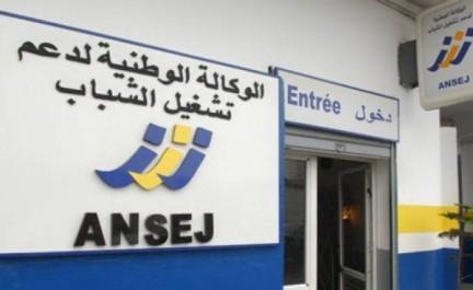 Dispositif de l'ANSEJ: plus de 110 micro-entreprises montées en 2016 à El-Oued