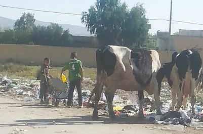 Alors qu'ils devaient être en classe: Des enfants cherchent du plastique de recyclage dans les ordures