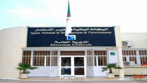 Ain Temouchent: 55 dossiers validés en 2016 par le guichet unique décentralisé de l'ANDI