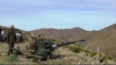 Une quantité de munitions récupérée suite à l'élimination de deux terroristes à Médéa (MDN)