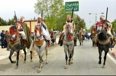 Concours «Allure et modèle» : 700 chevaux en lice à Tiaret