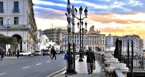Programme Blanche Algérie : Des microentreprises mises en demeure