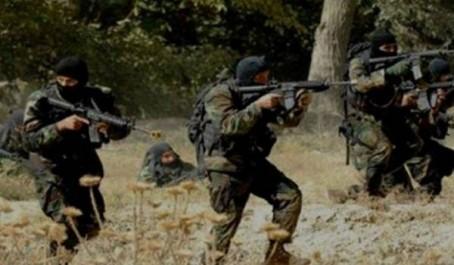 Destruction de trois abris pour terroristes et d'une mine de fabrication artisanale à Boumerdès et Skikda (MDN)