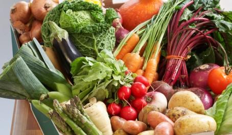 Agriculture : Des mesures pour promouvoir l'exportation.
