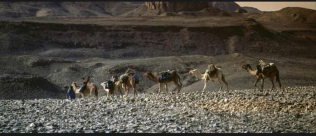 Le secteur du Tourisme ne représente que 1,5% du PIB de l'Algérie
