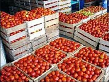 Skikda : une ville côtière retournée vers l'agriculture