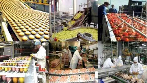 Industrie agroalimentaire : Vers la création de 250 000 emplois, selon le président de la CIPA.