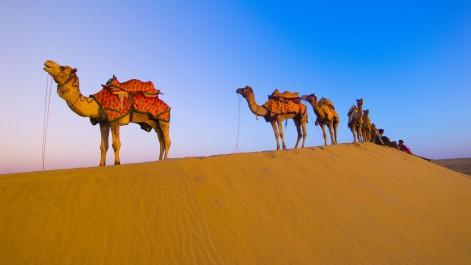 Raid « Envie d'Algérie : Alger-Tamanrasset »: Que l'aventure commence!