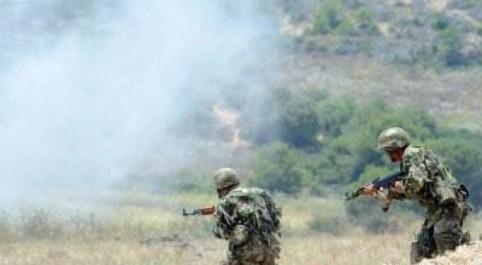 Bordj Badji Mokhtar: 2 terroristes interceptés par les forces de l'ANP