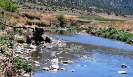 Saisie de pompes servant à irriguer des cultures avec des eaux polluées à Batna