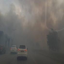 Canicule: 24 incendies à Alger et 28 à Tizi-Ouzou, une personne tuée.