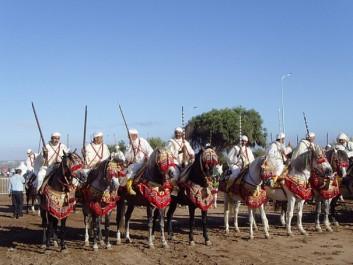 Tiaret: Les organisateurs du Salon du cheval honorés