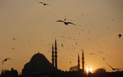 Etat D'Urgence En Turquie: La CEDH croule sous les plaintes