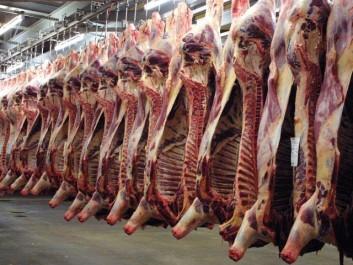 Conséquence attendue de la prochaine fermeture de l'abattoir d'Hussein Dey : La viande rouge risque de flamber.