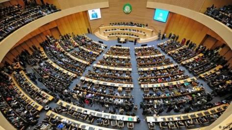Le Maroc et neuf pays se retirent du sommet afro-arabe:  le front des monarchies