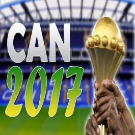 Sports : CAN-2017 : équipe nationale Leekens mise sur «une bonne préparation»