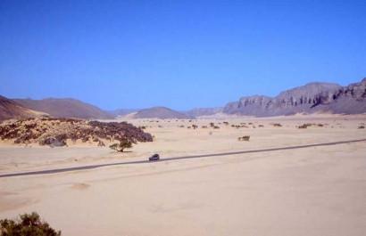 Nouvelle perspective pour Algérie Télécom : devenir un «hub» africain de l'internet