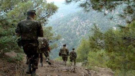Destruction de deux casemates pour terroristes à Boumerdes