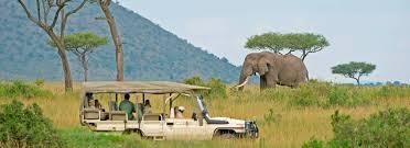 Kenya : les touristes reviennent