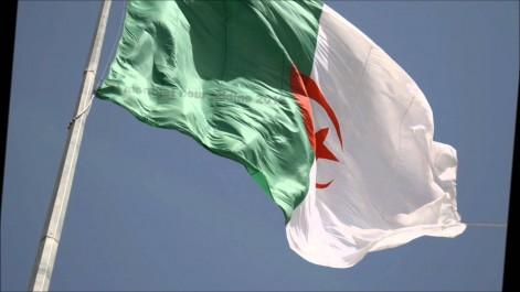 Ces 10 Algériens qui ont brillé en 2016.