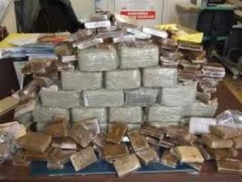 Saisie de 10 kg de kif traité à Tlemcen et plus de 1000 comprimés psychotropes à Skikda (MDN)