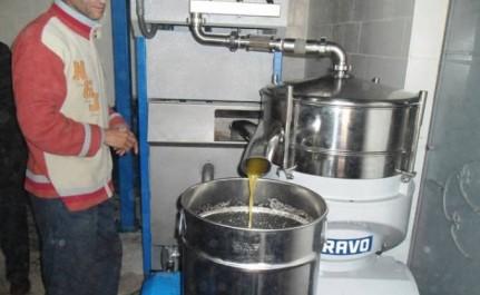 """Une journée dans une huilerie semi-traditionnelle a la Khdaria:  Ces """"alchimistes"""" de l'or vert"""