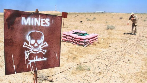 Mines antipersonnel et antichar à Tindouf et Béchar: 8.104 unités détruites en décembre.
