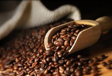 Nouveau texte pour encadrer la production et la commercialisation du café