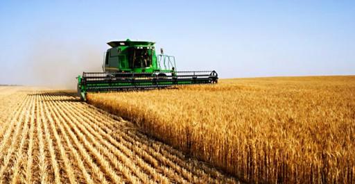 Algérie: Stages de formation encadrés au profit de 218 agriculteurs de Souk Ahras