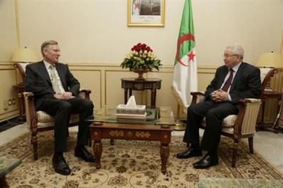 L'ambassadeur néerlandais salue les efforts de l'Algérie en faveur de la stabilité dans la région du Sahel