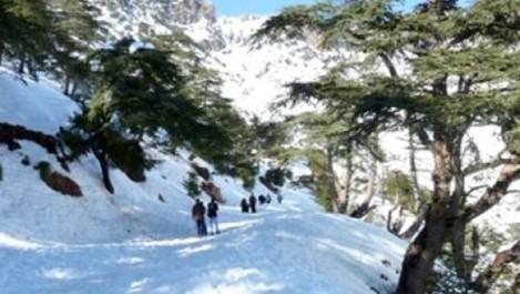 Afflux record de visiteurs sur la station climatique de Tikjda