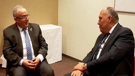 L'Egypte est «fière» de ses relations avec l'Algérie (MAE égyptien)
