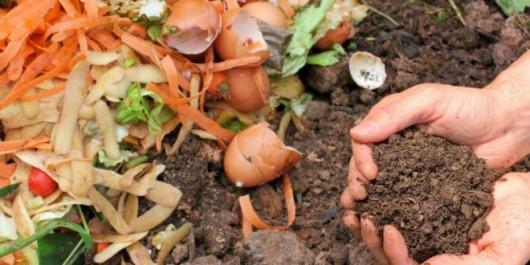 Chambre d'agriculture d'Oran: Projet-pilote pour l'expérimentation d'un compost issu de déchets organiques