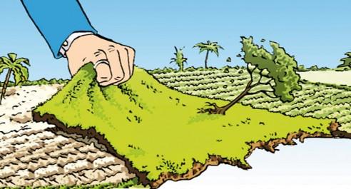 La mafia du foncier sévit à Tamanrasset: Le conservateur à l'index