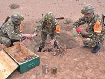 L'opération de déminage des lignes Challe et Morice est totalement achevée: Le pari réussi de l'ANP