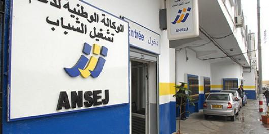L'ANSEJ s'autofinancera d'ici trois ans (DG)