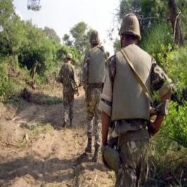 Le cadavre d'une terroriste découvert dans la forêt de Skikda