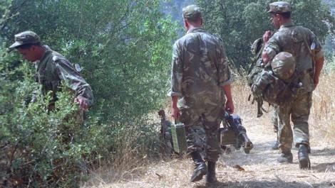 MDN: 20 casemates pour terroristes, un canon et 03 bombes de fabrication artisanale découverts et détruits à Aïn Defla