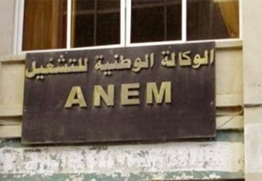 Algérie – Seuls 32,7% des demandeurs d'emploi ont pu être placés entre le 1er janvier et le 31 août 2017 (Anem)