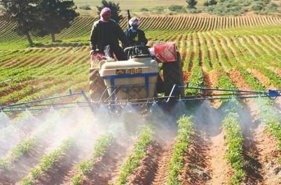 Secteurs-Clés de l'économie de demain en Algérie: Oxford Business Group identifie l'agriculture et l'industrie